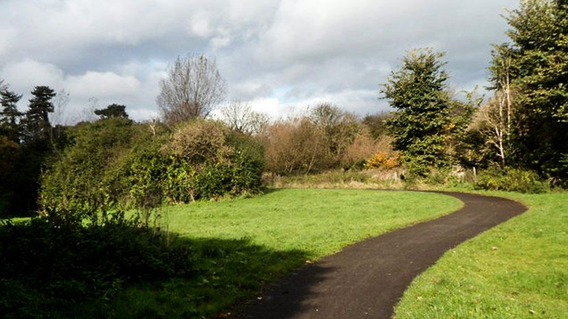 Friends of Crow Lane Open Space